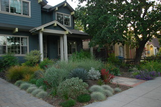 The front yard was sculpted into berms and swales for for Verdance landscape design