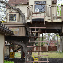 Dallas, TX: Tree House