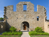 rustic landscape Houzz Tour: Taking on the Ruins of an 1800s Bourbon Distillery (21 photos)