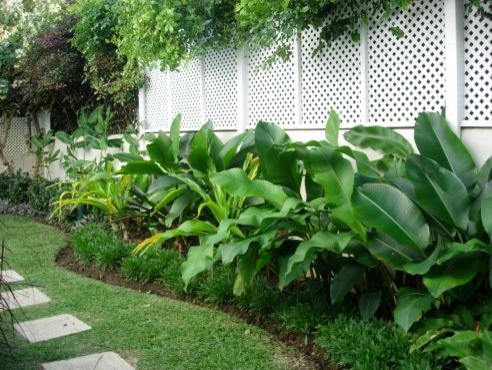 Landscape garden names for Landscaping plants pictures and names