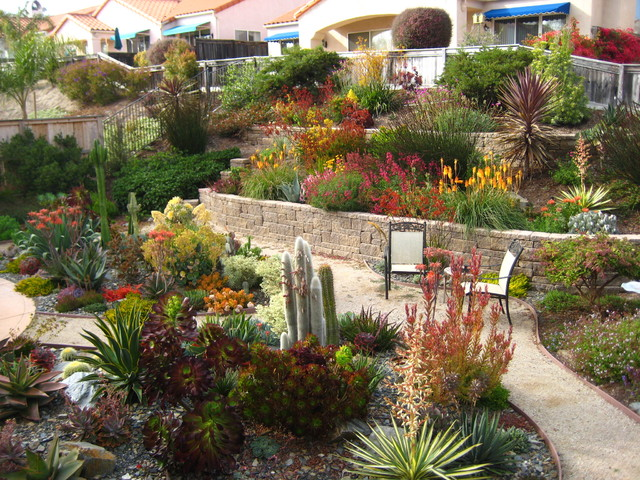 Tiered drought tolerant pismo beach landscape for Beach garden designs