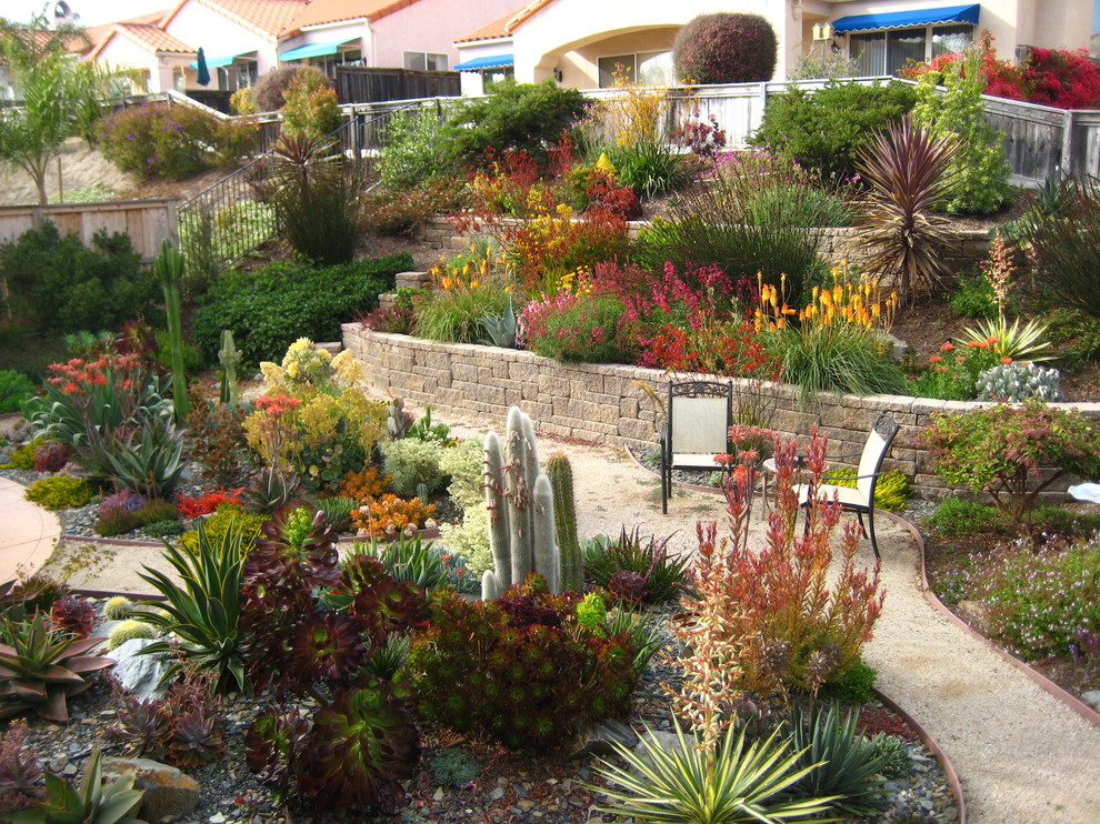 Photo of a mediterranean landscaping in San Luis Obispo.