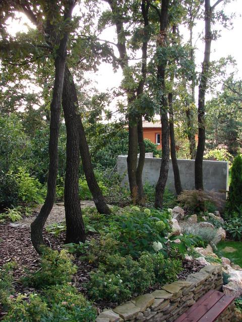 Tiny Oak Forest Garden Eclectic Landscape