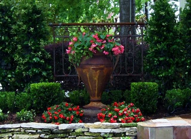 Townhouse Pocket Garden eclectic-landscape