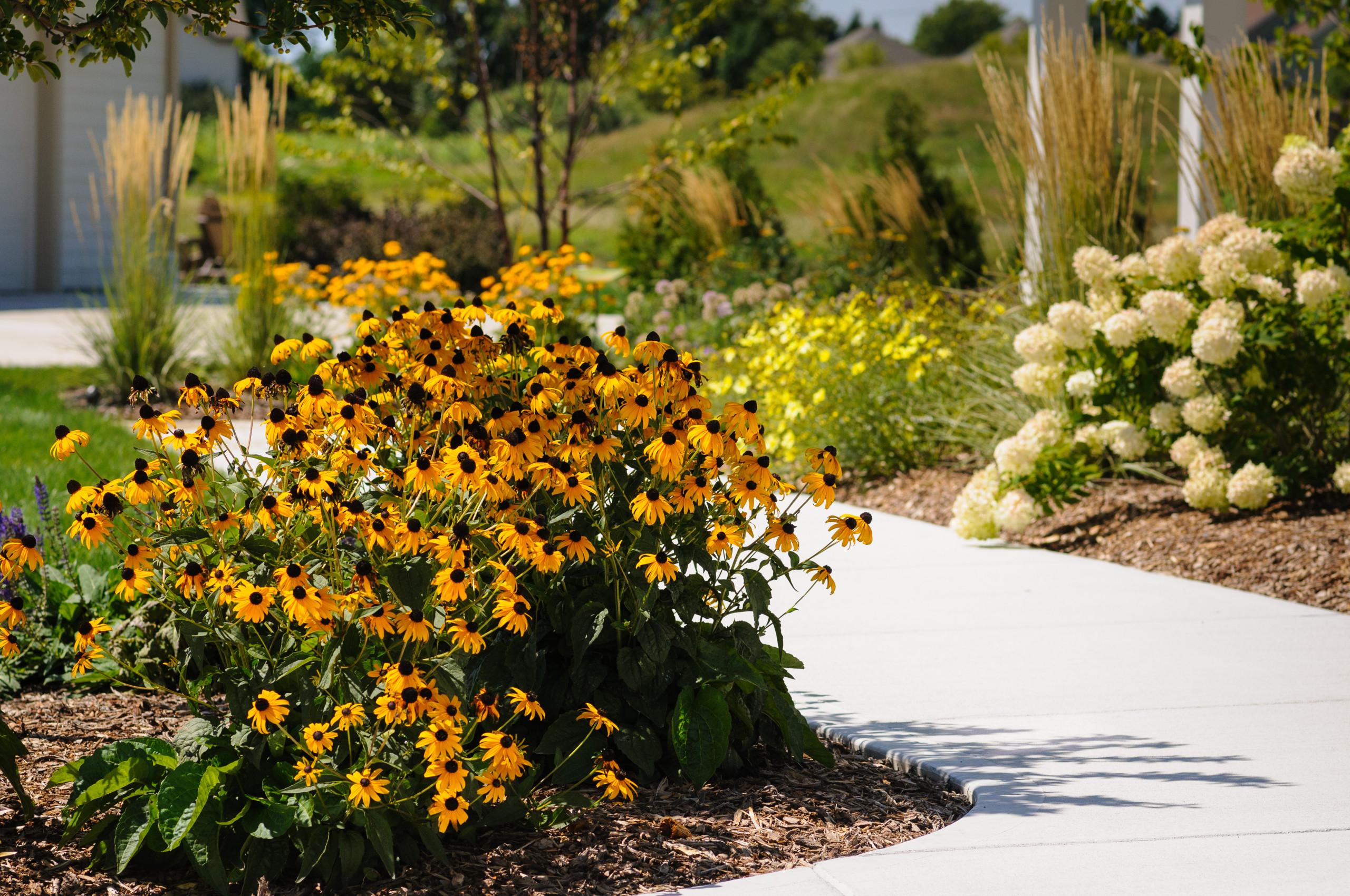 Traditional Front Yard Landscape - Cedarburg