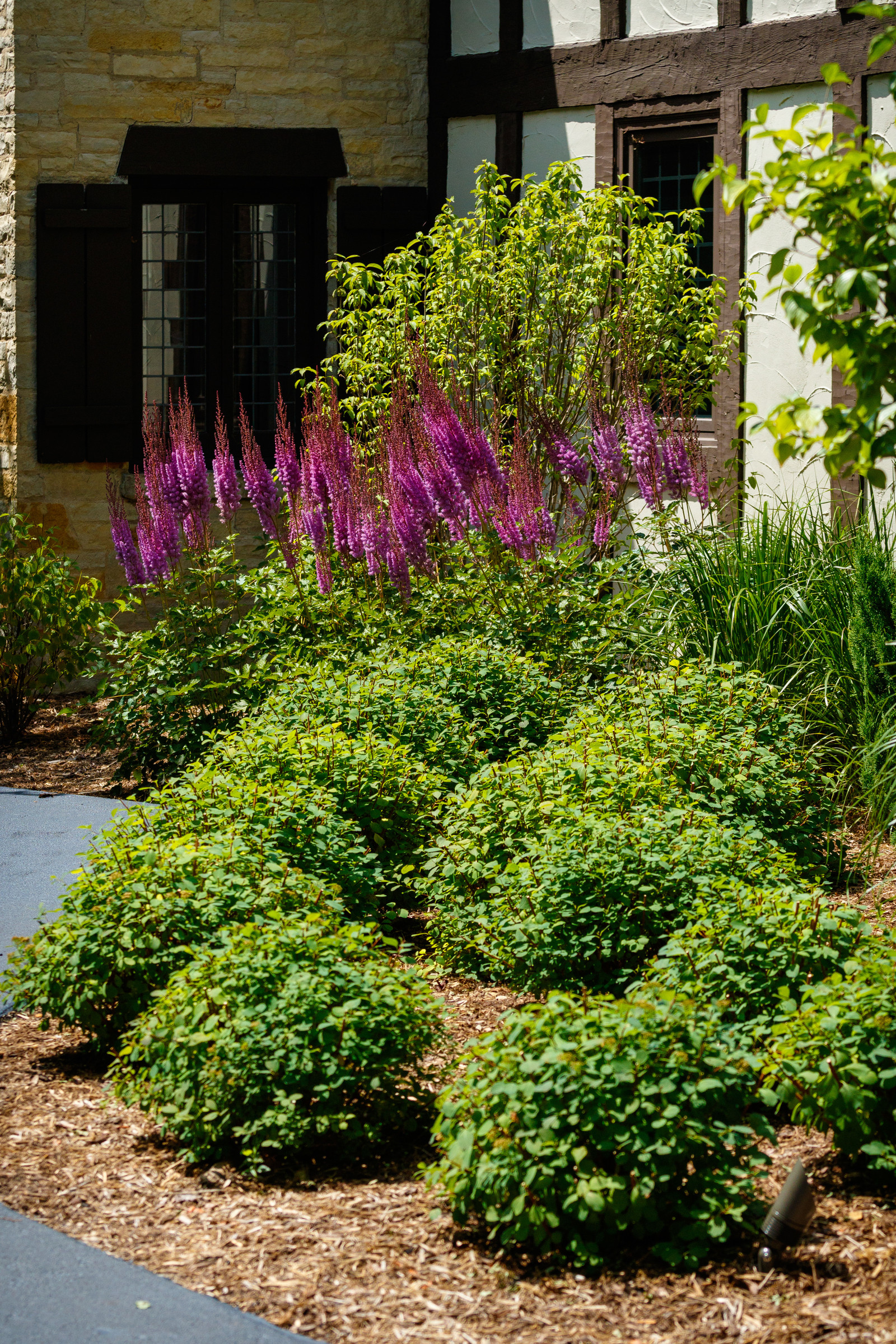 Traditional Front Yard Landscape - Fox Point