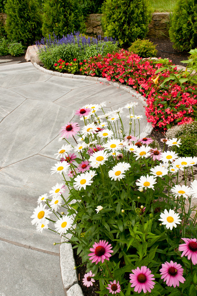 Photo of a traditional full sun flower bed in Portland Maine for summer.