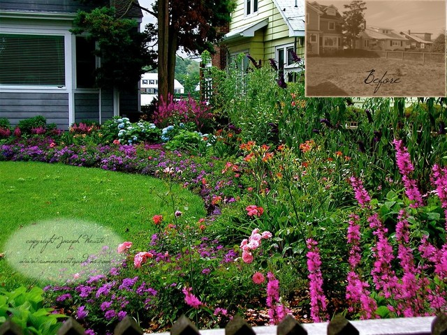 Front Yard Cottage Garden traditional-landscape