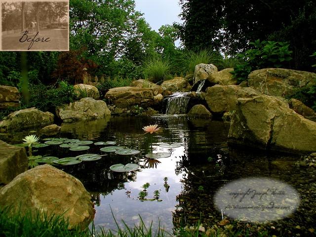 Koi pond design traditional landscape new york by for Koi pond york