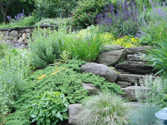 Steep slope landscape planting traditional landscape for Garden designs on a slope