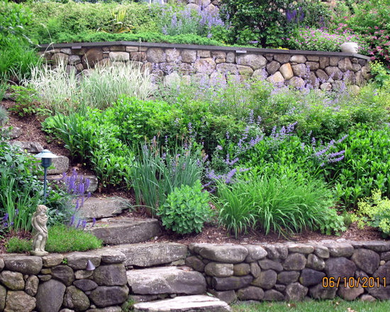 Landscaping landscaping ideas hills or slopes or banks - Ideas for gardens on a slope ...