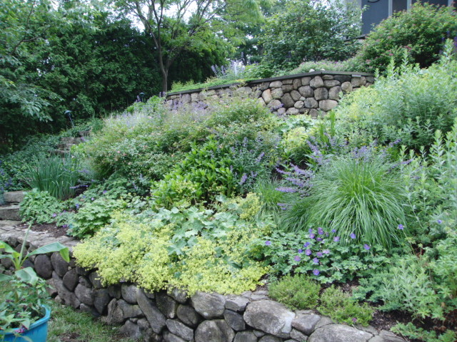 Landscaping landscaping ideas for steep slopes for Garden designs on a slope