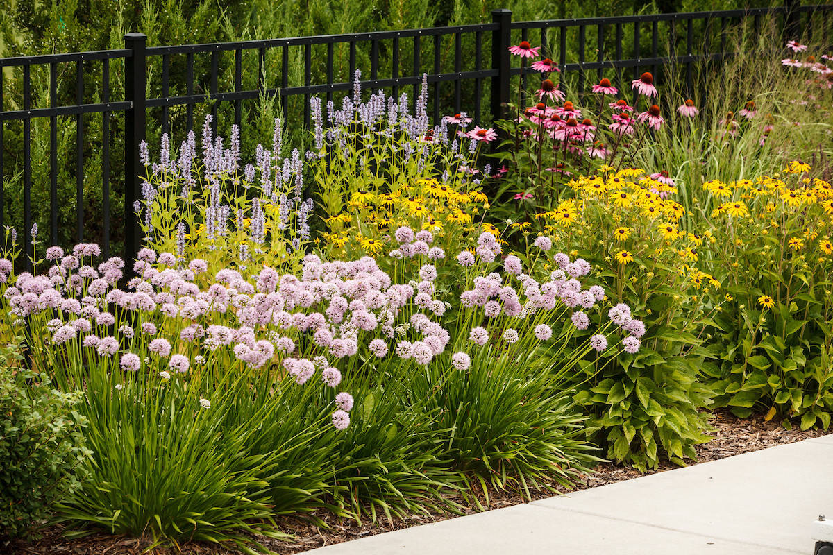 Traditional Perennial Garden - Cedarburg