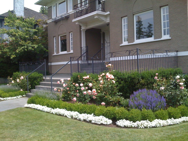 Traditional roses and lavender traditional landscape for Garden design vancouver
