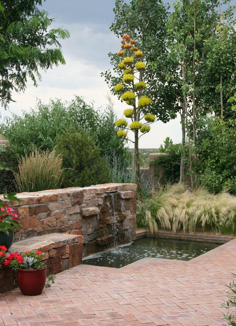 Traditional Southwest Garden