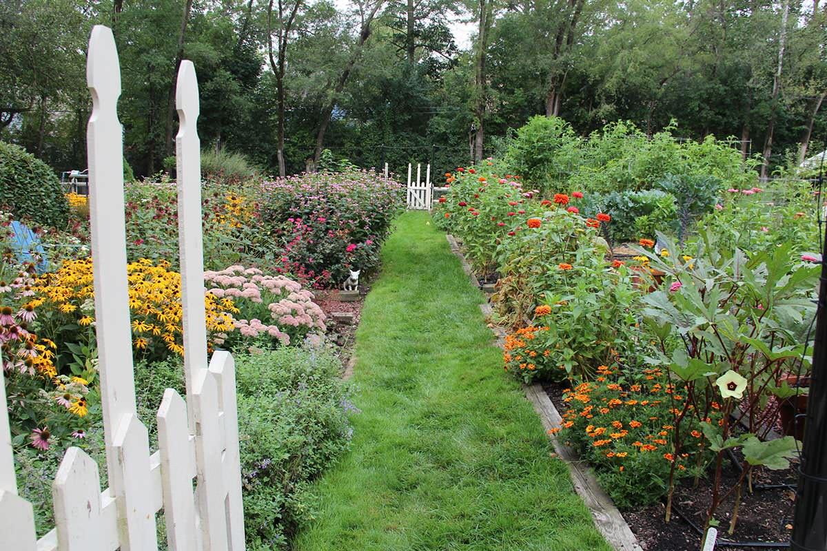 Tradtional Vegetable Gardens, Herbs and Flowers