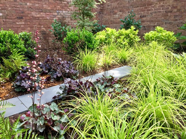 This is an example of a transitional landscaping in Charlotte.