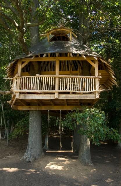 Tree House tropical-kids