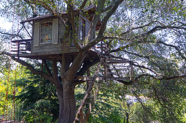 Treehouse eclectic garage and shed