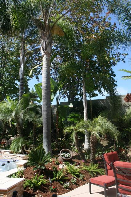 Trexel Project tropical-landscape
