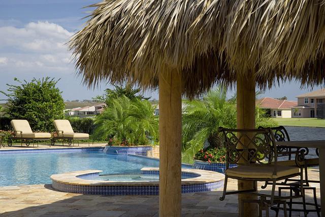 Amazing Tropical Backyard Tropical Landscape Amazing Ideas