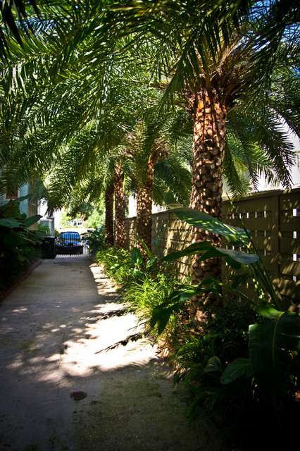 tropical bayou st john residence tropical landscape new orleans