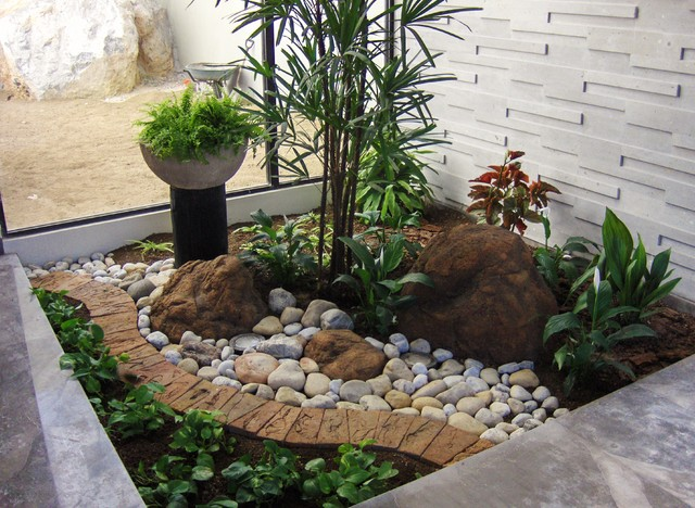 Tropical - Front garden ideas tropical ...