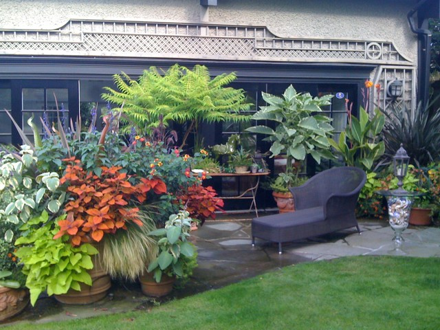 container garden design ideas tropical containers tropical landscape - Container Garden Design Ideas