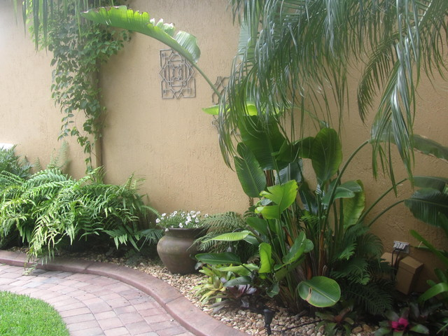 florida landscape design bed ideas best house design ideas