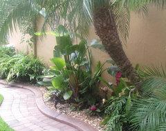 Tropical Florida tropical-landscape