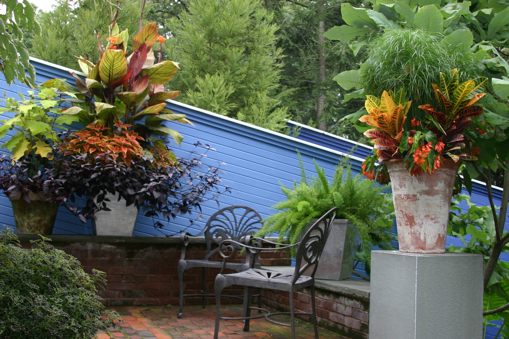 Photo of a tropical landscaping in Seattle.