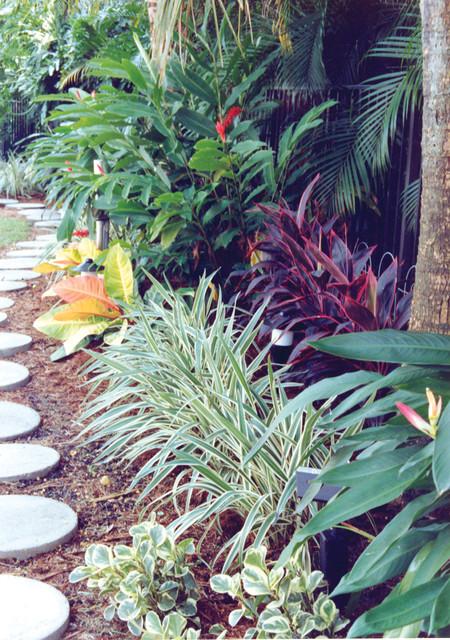 Tropical Landscape Border Tropical Landscape Miami