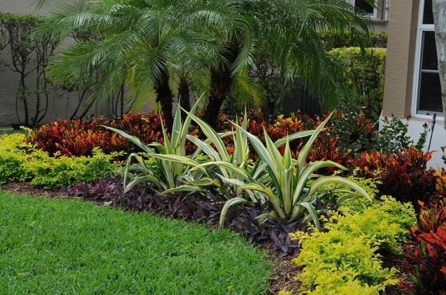 Tropical Landscape Color Ex 243 Tico Jard 237 N Miami De
