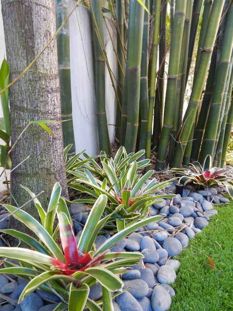 Tropical landscape designs tropical landscape for Tropical landscape design