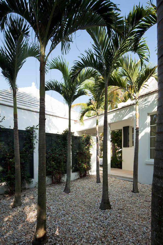 Inspiration for a mid-sized tropical courtyard gravel garden path in Miami.