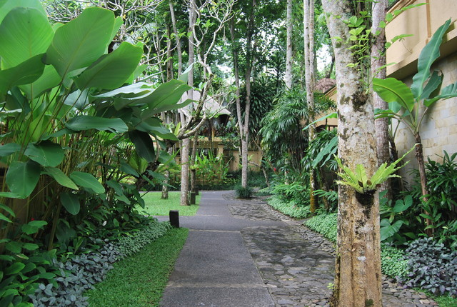 Tropical Landscape Tropical Garden Other By Made