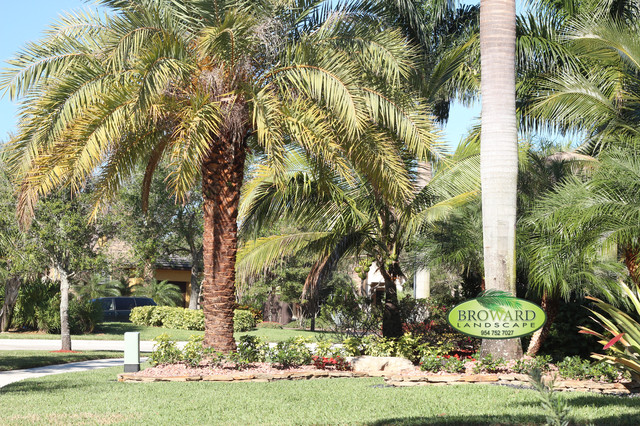 Tropical landscaping tropical landscape miami by for Landscaping rocks broward county
