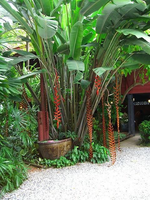 Tropical lifestyle Bali style on Boracay Island