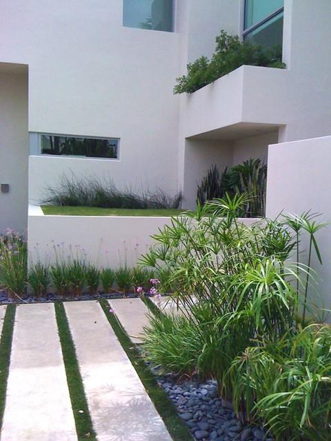 Tropical Modern modern-landscape