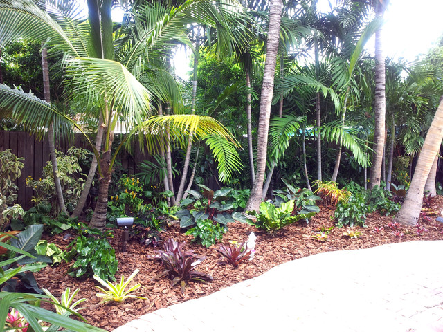 Tropical Paradise - Backyard Makeover - Tropical ... on Tropical Backyards  id=81792