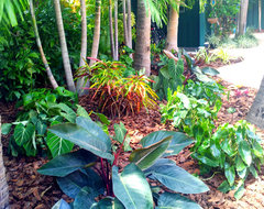 Tropical Paradise - Backyard Makeover tropical-landscape