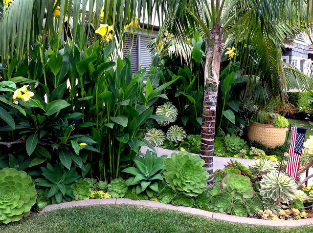 Tropical retreat newport beach for Tropical landscape