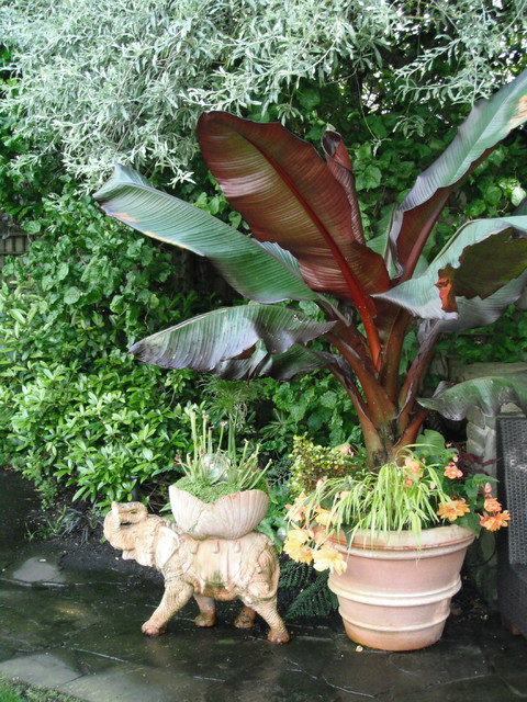 Tropical Theme Container Landscape