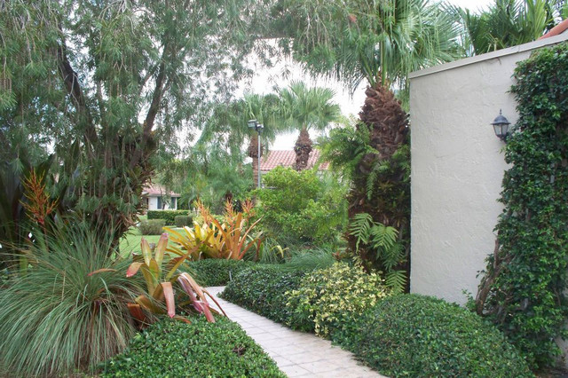 Tropical Walkway in Weston, FL tropical-landscape