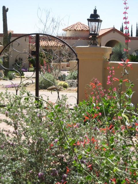 Tucson landscape design traditional-landscape