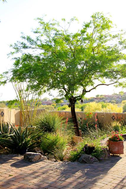 Tucson Oasis mediterranean-landscape