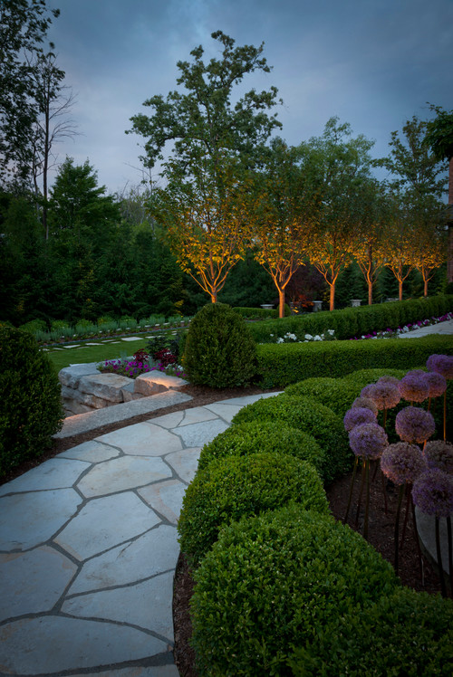 Here we see more well lights highlighting trees as well as some small purple bushes in the garden area. These lights can be subtle and dramatic at the same time.