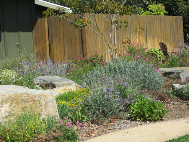 California native friendly front yard mediterranean for California native landscape design