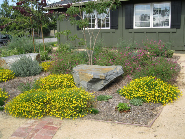 Landscaping pictures of front yard natural landscaping for Natural landscape design