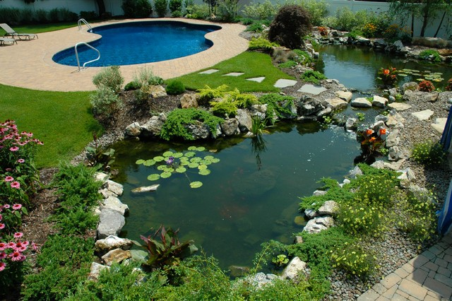 Twin ponds one pond for fish and one pond for water plants